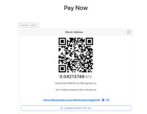 Taxi Bitcoin